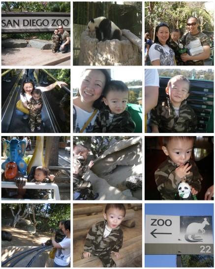 san-diego-zoo.jpg