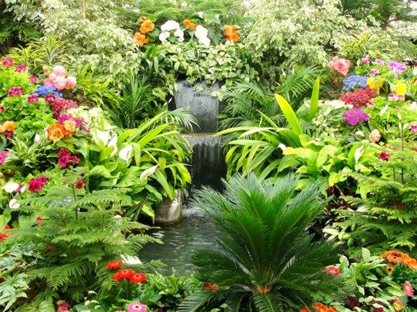 butchart garden1