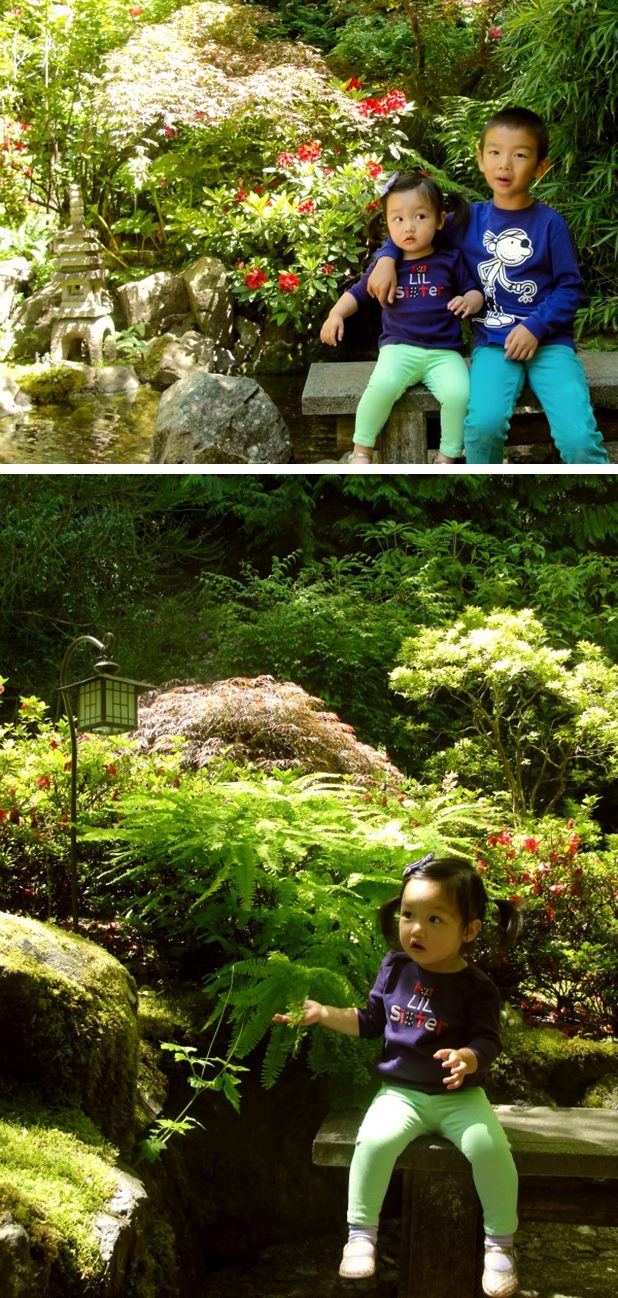 japanese garden3-vert