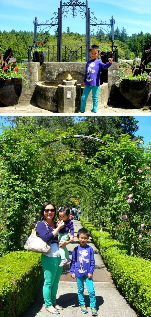 rose garden1-vert