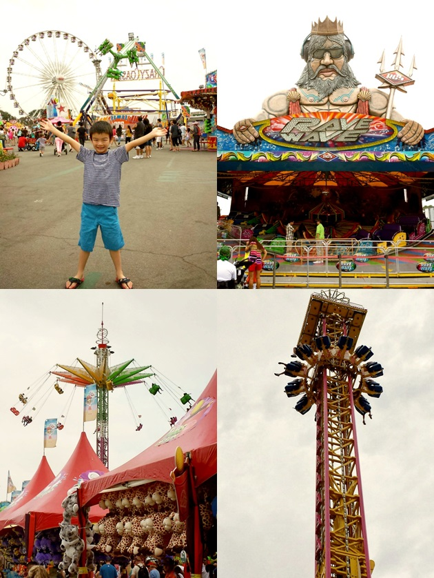 oc fair collage