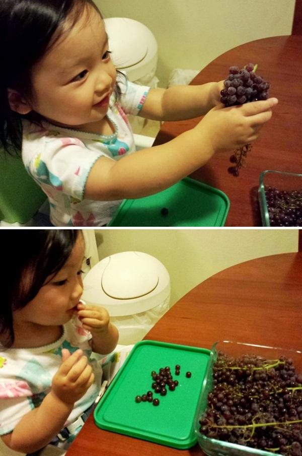 sunday turbo13 grapes