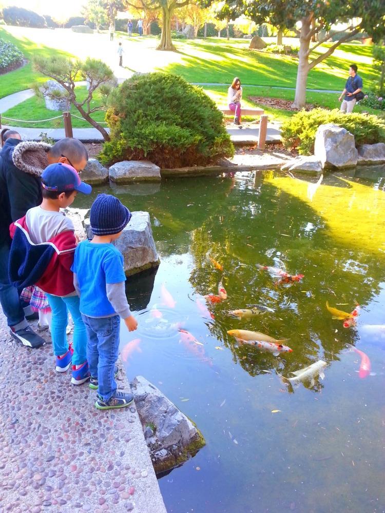day 2 japanese garden 5