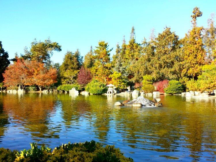 day 2 japanese garden 6