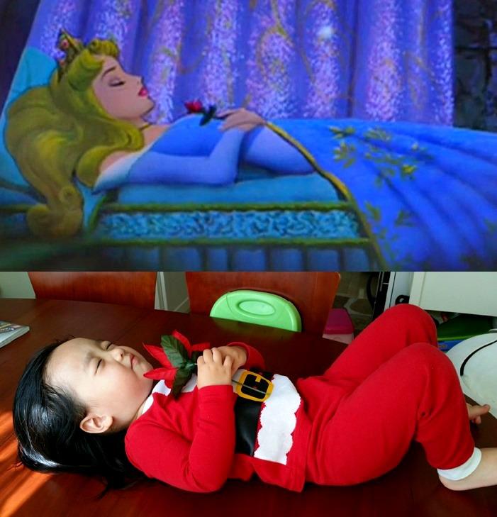 sleeping beauty-vert