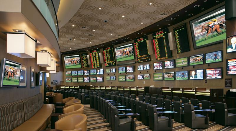 Race and Sports Book interior