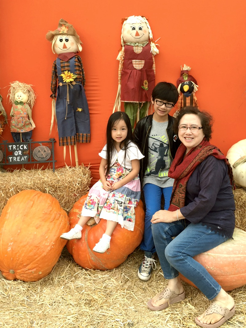 pumpkin-patch-1